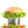 Unhealthy canned fast food hamburger depicting con...