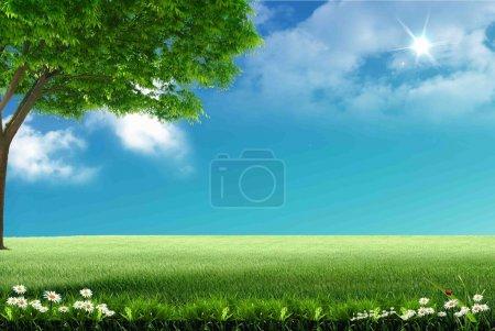 Photo pour Fleurs de Nice pour votre conception - image libre de droit