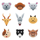 Collection color icons featuring funny animals