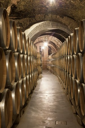 Old cellar with barrel of wine