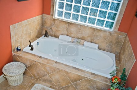 Bathroom Tub Area