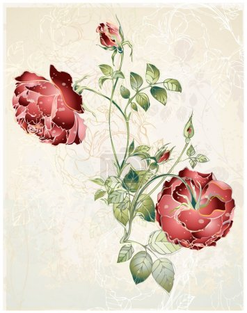 Illustration for Greeting card with rose. Illustration roses. - Royalty Free Image