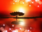 Vector sunset (the tree on the water against the setting sun)