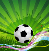 Vector Soccer Ball background grass and colorful wave