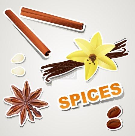 Illustration pour Stikers ensemble vectoriel : épice - image libre de droit