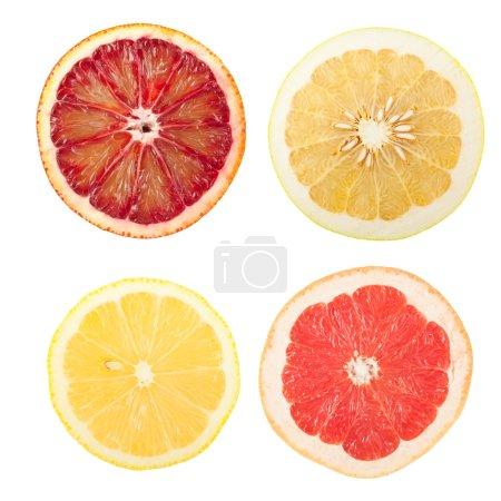 Citrus slices isolated on white background...
