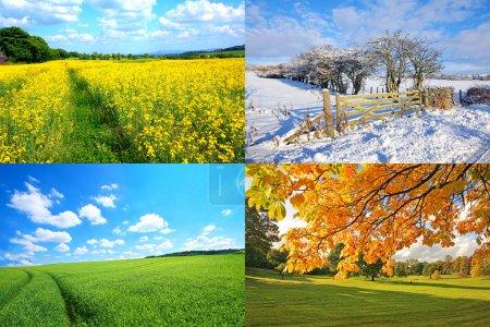 Photo pour Collection 4 saisons, horizontale - image libre de droit