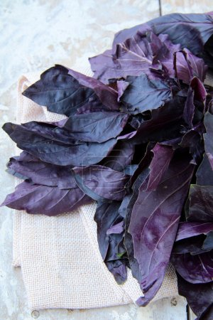 Photo for Red purple basil on a wooden table - Royalty Free Image