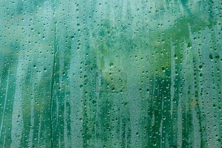 Photo pour La surface de feuilles en polyéthylène avec un condensé de gouttes de rosée sur l'arrière-plan flou de plantes vertes - image libre de droit