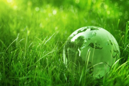 Photo for Glass globe in the grass - Royalty Free Image