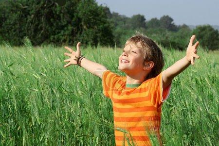 glücklich, Junge, lächelnd, Sommer, Glück, Feld - B6361965
