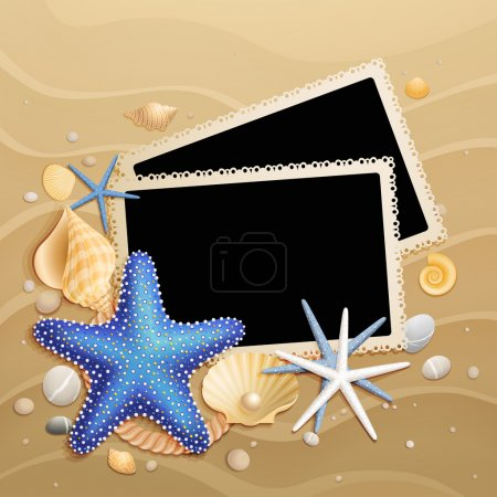 Pictures, shells and starfishes on sand background
