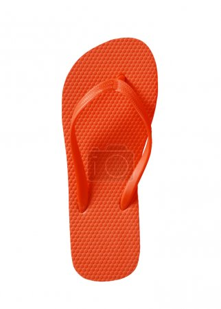 Summer Flip Flop Sandals isolated