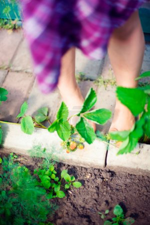 Artistic lifestyle photo of cute little girls legs outdoor