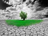 """Постер, картина, фотообои """"понятие окружающей среды"""""""