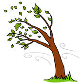 Wind Blowing Leaves Off Tree