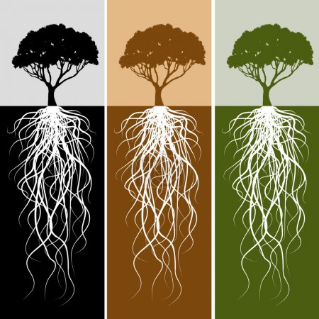 Vertical Tree Root Banner Set