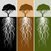 """Постер, картина, фотообои """"Вертикальные дерева корневой набор баннера"""""""