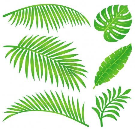 Photo pour Illustration des feuilles tropicales d'été . - image libre de droit