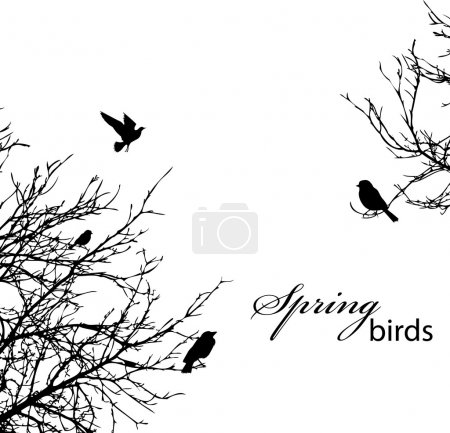 Illustration for Silhouette of trees and birds, copyspace - Royalty Free Image