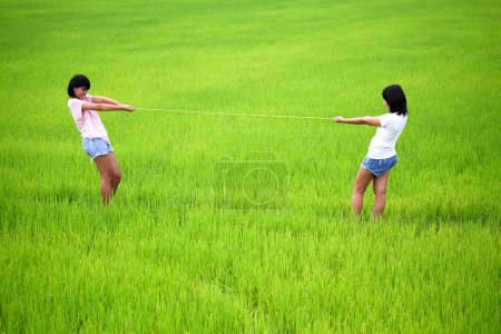 Tug of war between two young girls in paddy field