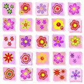 Květinové ilustrace
