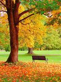 Podzim v Helsinkách veřejné zahrady