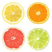"""Постер, картина, фотообои """"Citrus slices"""""""