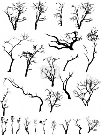 Illustration for Creative Isolated Design Set Of Scare Dead Trees Collection - Royalty Free Image