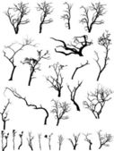 Creative Isolated Design Set Of Scare Dead Trees Collection