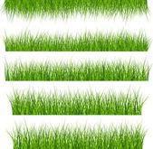 5 Vector Set Of Green Grass