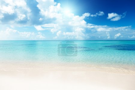 Photo for Sand of beach caribbean sea - Royalty Free Image