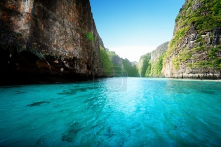 Bay at Phi phi island in Thailand