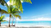 Mer des Caraïbes et cocotiers