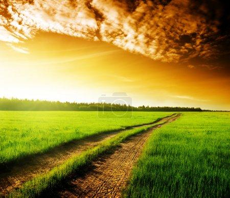 Foto de Puesta del sol y del camino de tierra - Imagen libre de derechos