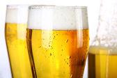 Pivní kolekce