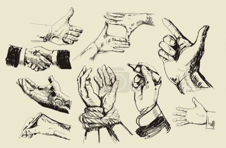 Illustration for Vector vintage hand drawn of hands - Royalty Free Image