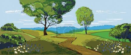 sonnige Wiesenlandschaft