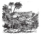Bethany or Biblical village Jerusalem vintage engraving