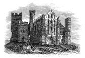 Rock of Cashel or Cashel of the Kings, Ireland vintage engraving