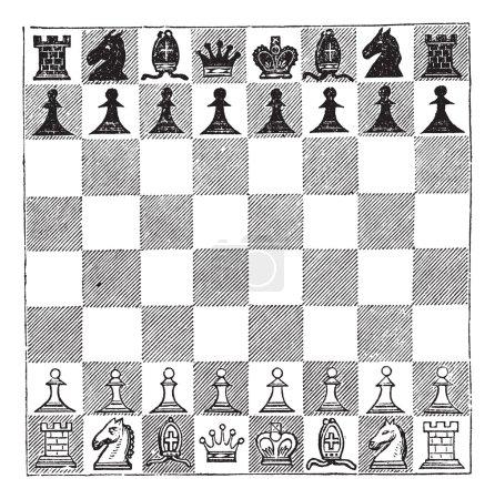 Chess, vintage engraving