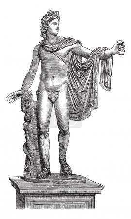 Illustration for Apollo Belvedere or Apollo of the Belvedere or Pythian Apollo in Vatican City, vintage engraving. Old engraved illustration of the statue of Apollo Belvedere. - Royalty Free Image