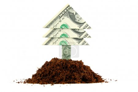 Photo pour Un arbre à billets d'un dollar qui pousse à partir d'un tas de terre sur un fond blanc solide . - image libre de droit