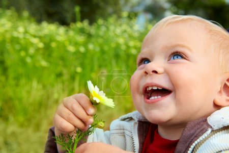 Photo for Small baby boy holding a daisy in his hand and laughing in the field of flowers. - Royalty Free Image
