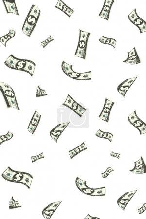 Raining Dollar
