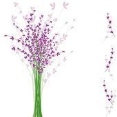 Letní fialové levandule květ