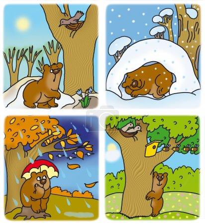 Photo pour Petit ourson à différents moments de l'année - image libre de droit