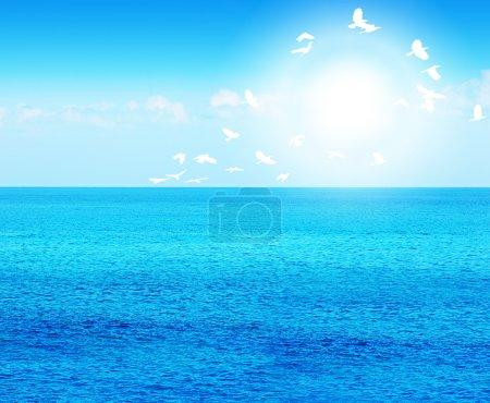 Deep blue sea with birds
