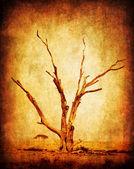 Dry grunge african tree
