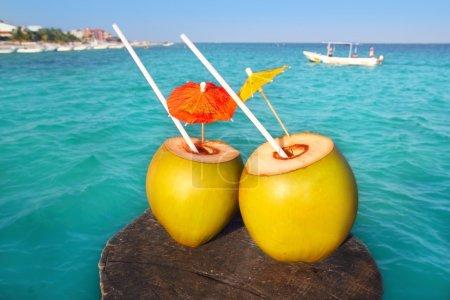 Photo pour Queues de coco dans les Caraïbes sur jetée en bois mer turquoise - image libre de droit